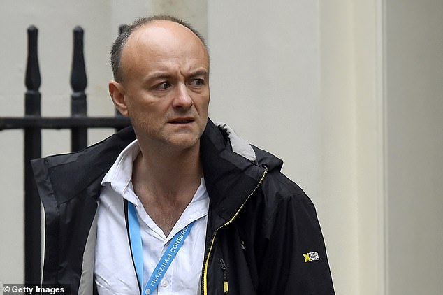 There were also carps directed at ragtag Downing Street aide Dominic Cummings (pictured), who'd been fingered for issuing an aggressive briefing against Brussels earlier that morning