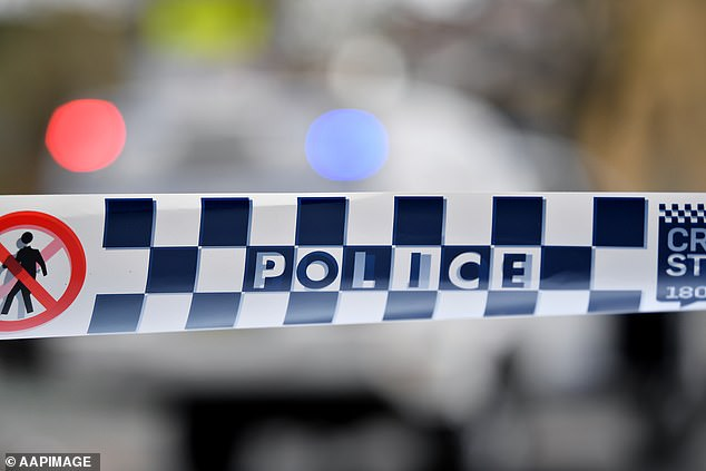 Katherine Police arrested David Gundari overnight in relation to alleged weapons and other offences committed in the town last month (file image)