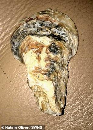 Bin Laden sea shell