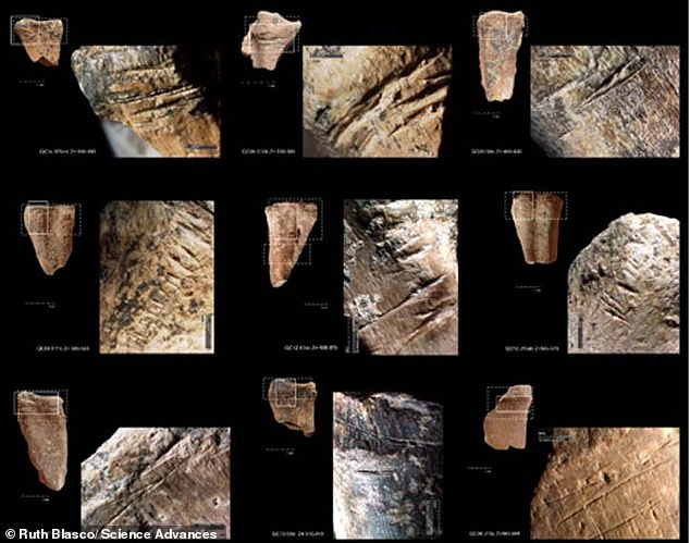 Remnants of bone marrow were discovered at Qesem Cave near Tel Aviv that are some 400,000 years old, suggesting the ancient dwellers stored and delayed consumption of food