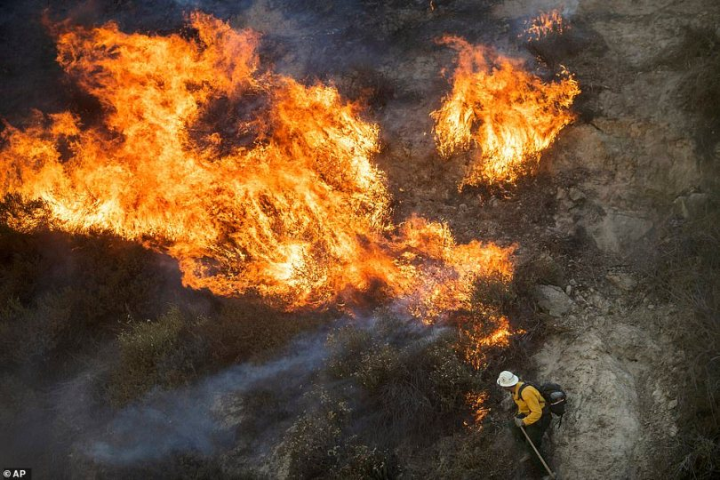 A firefighter attempting to deescalate a serious wildfire in Southern California as it quickly worked through dry vegetation and went on to scorch nearby homes as residents scrambled to safety