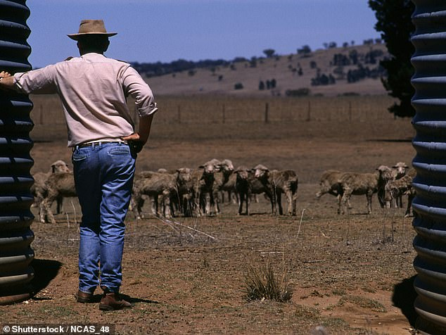 Drought stricken farmers have been dealt another blow as it has been revealed soil laced with toxic chemicals and plastics has been dumped on their land by the government