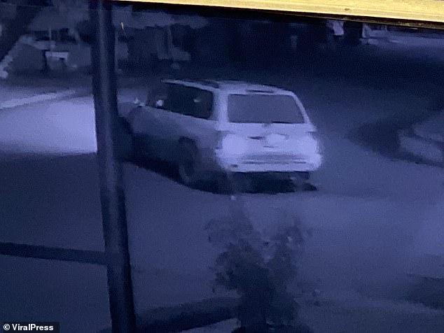CCTV from the city, which is popular among backpackers and travellers, shows the white Toyota Camry then pulled up alongside the woman