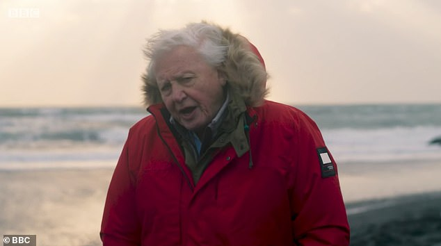 Sir David Attenborough's new documentary Seven World's, One Planet aired on BBC One tonight