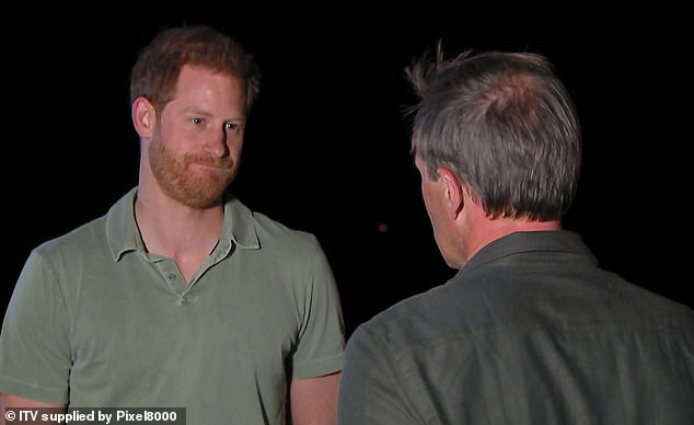 Harry (pictured), 35, refused to dismiss reports of a rift with his brother, Prince William, instead saying that they are on 'different paths' and have 'good days and bad days'