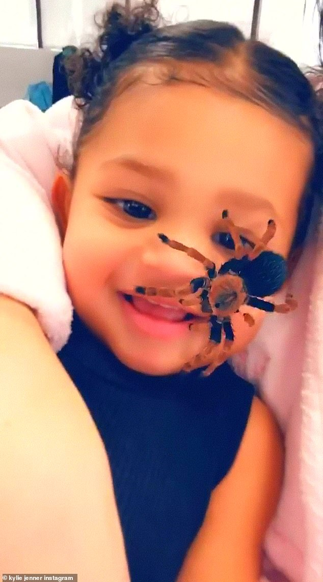 Eight legs: The controversial filter has sparked a craze for posting videos of terrified children to social media, much to the disgust of other users