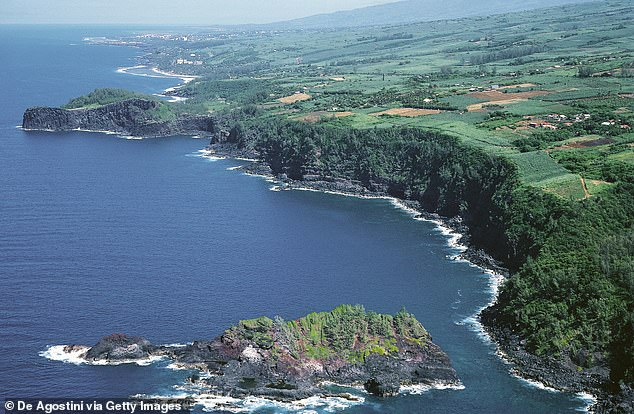 Swimming and other water activities are heavily restricted on Reunion (pictured) due to the high risk of shark attacks