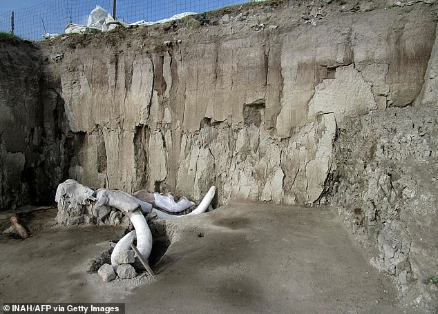 Mexican anthropologists say they have found two human-built pits dug 15,000 years ago to trap mammoths