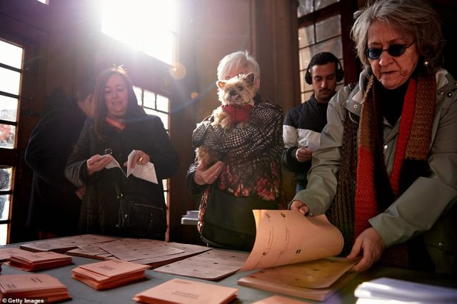 Voters in Barcelona, Catalonia, arrive to cast their votes in Spain's general election. One is holding a dog