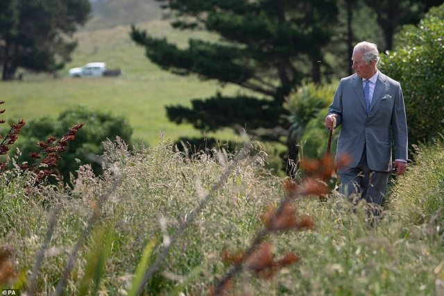 Prince Charles spent time taking in the scenery on Saturday. Since the 2016 earthquake predatory mammals have seen the population fall significantly as the tremor destroyed breeding sites