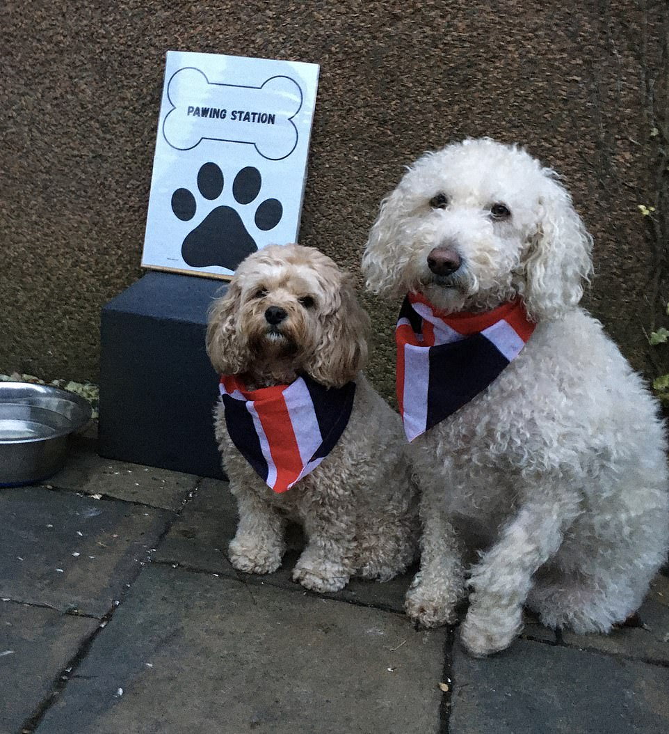 Millie and Charli (pictured above) heading off to vote North East Fife earlier this morning, both wearing little flags