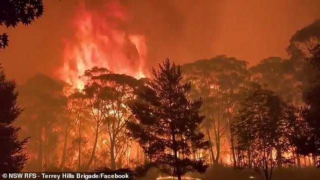 A 70-metre high wall of flames bore down in the Blue Mountains, north-west of Sydney in December