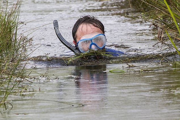 Entrants are required to swim two consecutive lengths of the murky water wearing flippers and a snorkel as the competition enters its 34th year