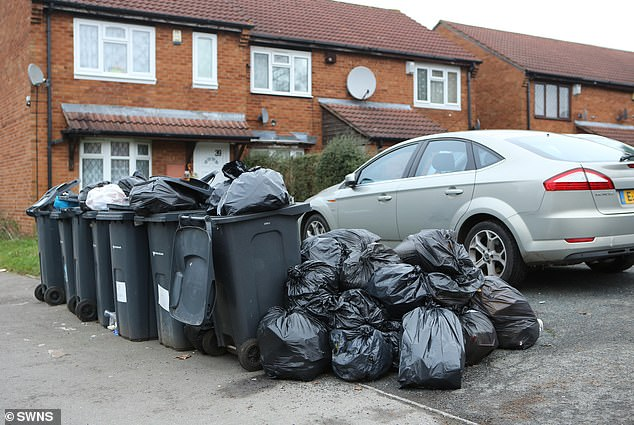 Birmingham City Council later encouraged residents to take their waste to the rubbish tip themselves which caused long delays at recycling plants