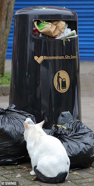 Rubbish continues to go uncollected on the streets in Birmingham