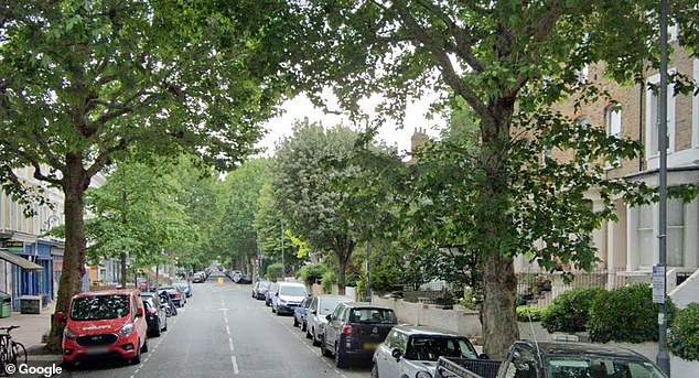 The cat roamed around this road in Hammersmith, West London, between the two houses
