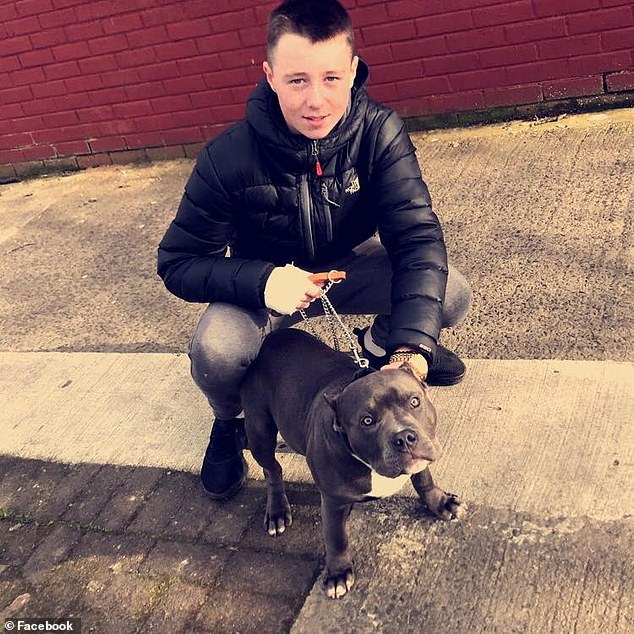 Gardai have recovered blood-stained machetes and knives believed to have been used in the brutal murder of young Keane Mulready-Woods (pictured)