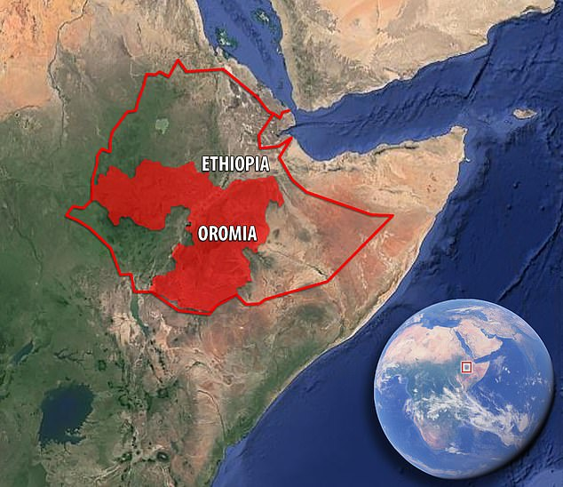 Ethiopia's Oromia region. Oromo make up 35 per cent of the population of the East African nation