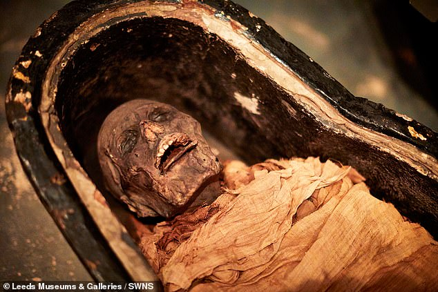 The priest¿s mummy unusually has its tongue sticking out, leading some to speculate that he died in his mid-fifties from poisoning or a bee sting to his tongue (pictured)