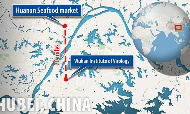 China's top virus lab is in Wuhan, the center of the outbreak