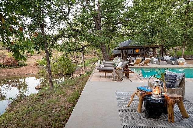The Chacma Bush Camp, pictured, which is near Kruger National Park in South Africa