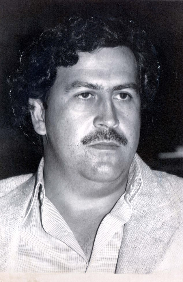 Pablo Escobar (pictured), who was shot dead by police in 1993, kept four hippos at his private menagerie at Hacienda Nápoles. They were left on the untended estate after his death