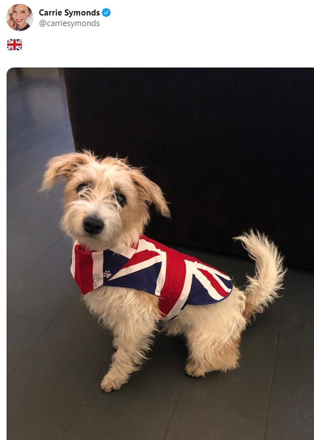 Mr Johnson's partner Carrie Symonds tweeted a picture of their dog Dilyn dressed up in a Union flag coat last night