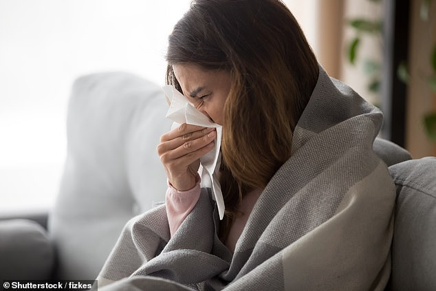 Some viruses travel in larger 'droplets' of saliva or mucus. These are coughed or sneezed out by an infected person, propelled forward, and don't float in the air (file photo)