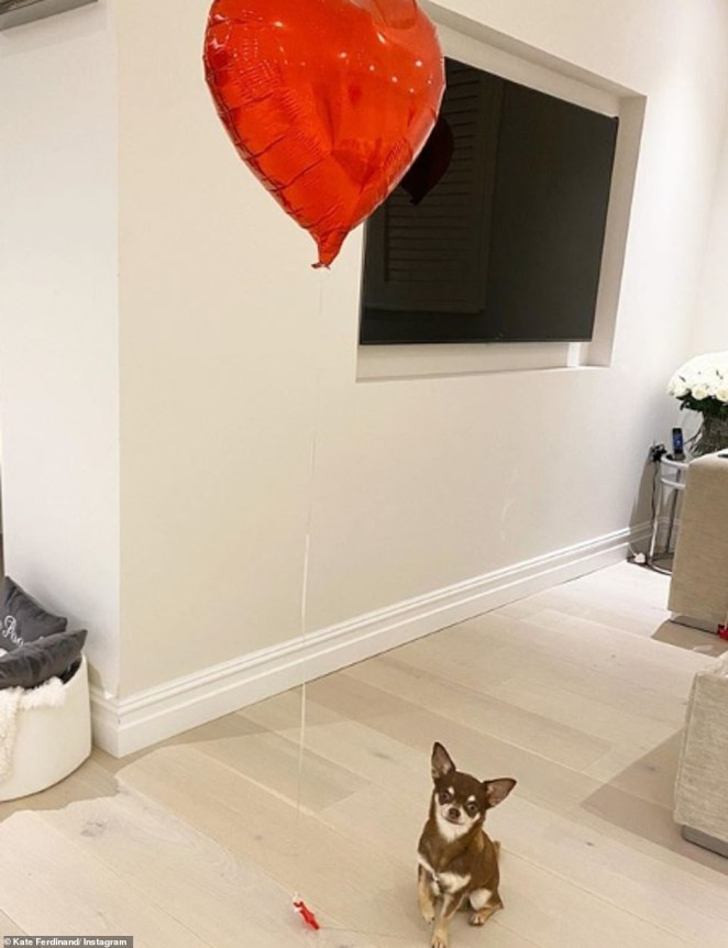 Solitary:Kate, who married her husband Rio Ferdinand in Turkey in September, shared a sweet snap of single heart balloon sitting alongside her beloved chihuahua Ronnie