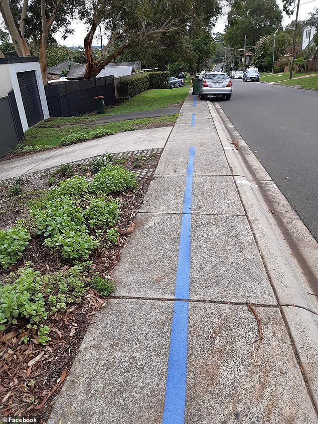 A resident shared an image on Thursday that showed a blue line painted down the footpath of a street in Caringbah South, in Sydney's south