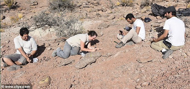 The new species was found in the Ezequiel Ramos Mejía Reservoir, 0.6 miles from El Chocón.
