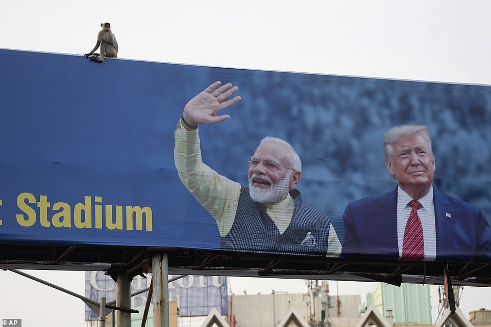 A monkey sits on a billboard featuringPrime Minister Narendra Modi and President Donald Trump