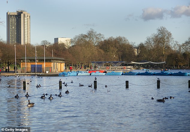London's Hyde Park (pictured) would be turned into a morgue if the killer coronavirus outbreak escalates in the UK, under worst-case scenario plans