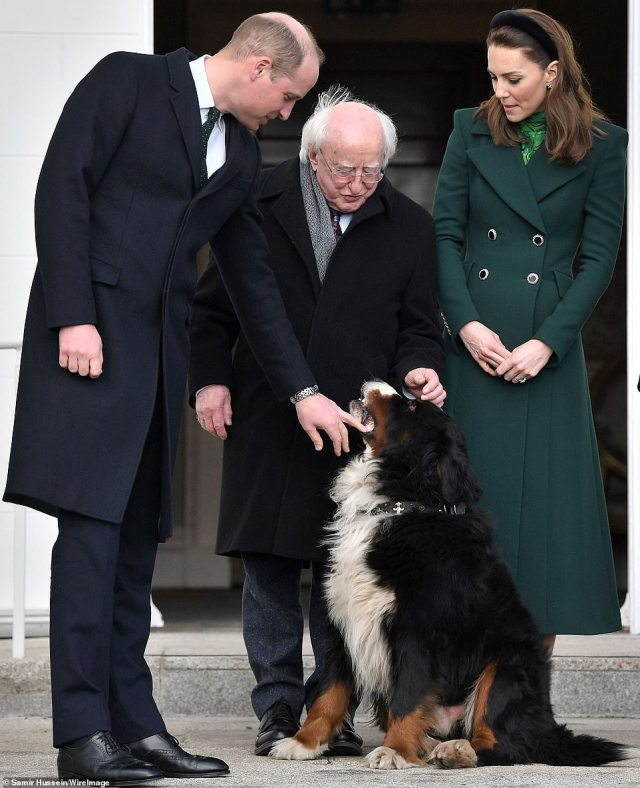 President Higgins pets his dog while the royals look on. Later, they arrived at the Garden of Remembrance, where the couple received a round of applause as members of the crowd cheered 'welcome to Ireland' and Kate smiled and waved back at them