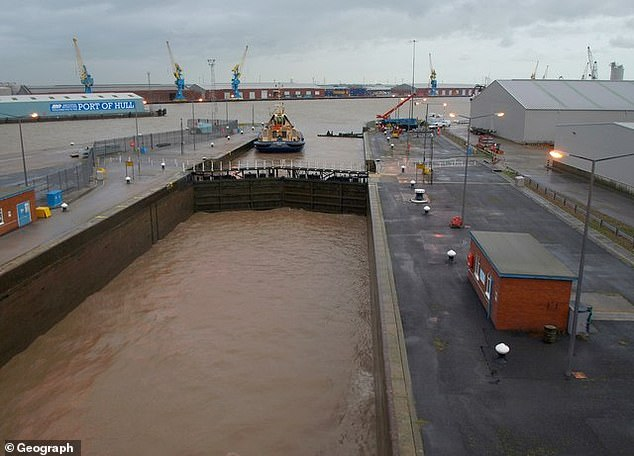 Eleven people have been found in a container at King George Dock in Hull, according to Humberside Police