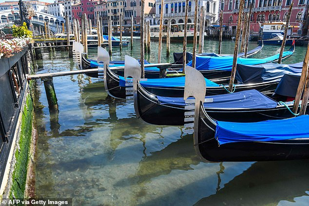 The legendary canals of Venice now run clear as the entire of Italy is in lockdown and tourists have been ordered to leave by the Government. The city is one of the world's most visited places and is usually heaving with tourists