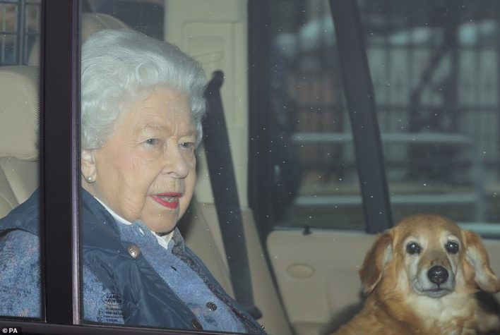 The Queen was seen leaving Buckingham Palace in London with her corgi-dachshund mix, who is called Candy, on her lap as she heads to Windsor Castle to join Prince Philip, who has travelled by helicopteru00A0from his home at Sandringham in Norfolk