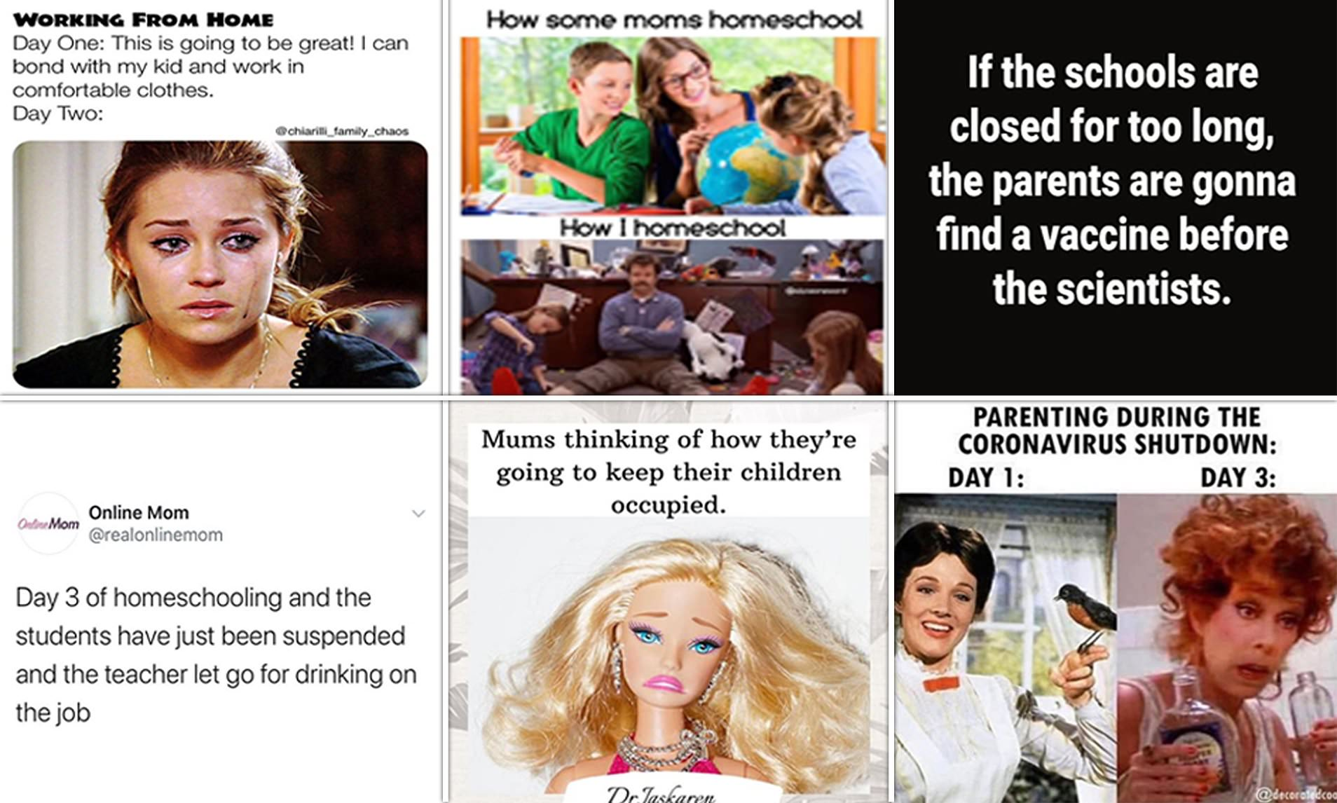 20 Memes That Accurately Describe Homeschooling During The Covid