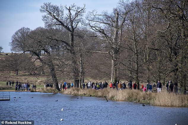 The government has urged people to stay at least two metres away from others. Richmond Park is pictured on Sunday
