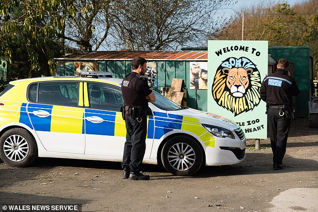 Welsh Zoo where lynx escaped from before being shot dead saw a fifth of its animals die in just 12 months including monkeys, a crocodile and leopard, council report reveals