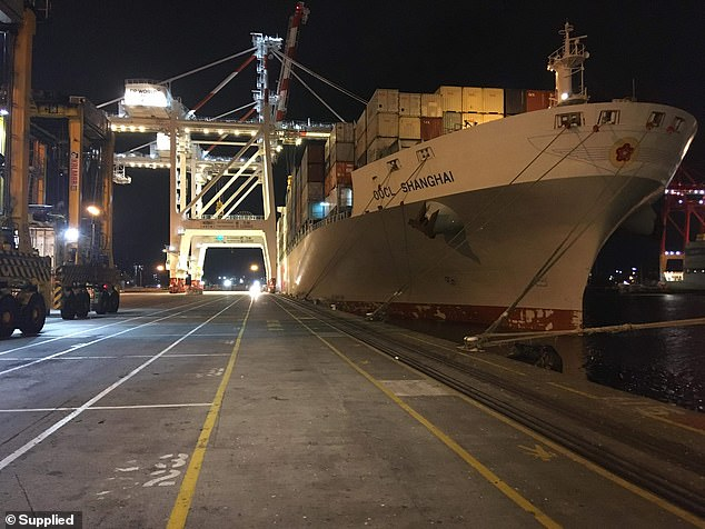 The OOCL Shanghai berthed at Melbourne's West Swanson Terminal on Tuesday night. It had just come from Taiwan and China
