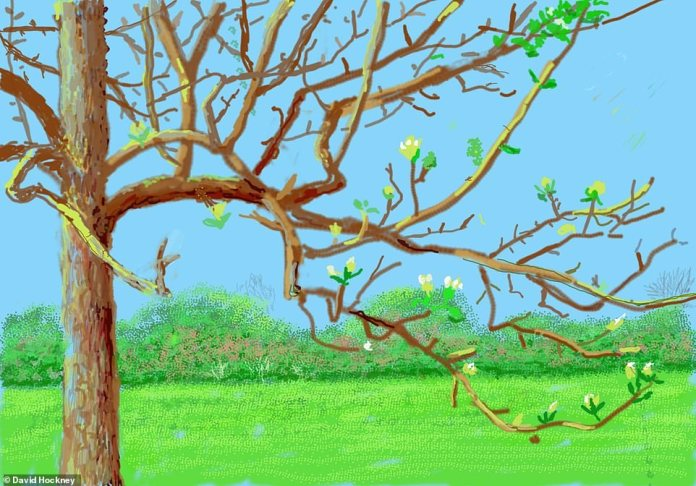 A winter tree in blossom during the turn of the season with white petals bursting from the branches. The tree is set against a vibrant green and blue background, depicting the grass, bushes and sky. Hockney said: 'I began drawing the winter trees on a new iPad. Then this virus started…', adding he went on drawing the trees going into blossom