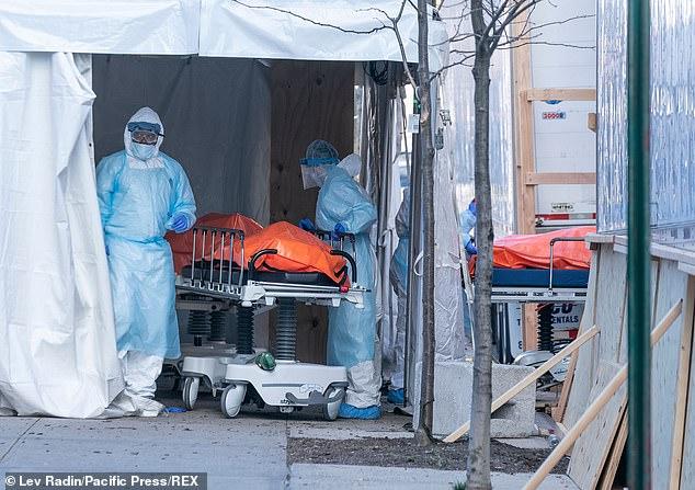 Los trabajadores del hospital en el Centro Médico Wyckoff Heights en Brooklyn empujan las camillas que llevan al recién fallecido a una morgue temporal dentro de camiones contenedores refrigerados el sábado