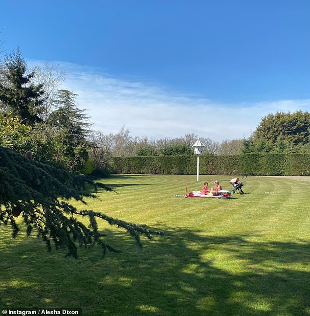 Sun-loving: Alesha Dixon enjoyed her Sunday home with her family in the large garden of their beautiful Hertfordshire home