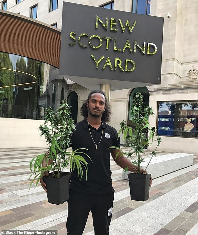Plants: in September 2017, posed in front of the New Scotland Yard in London with two marijuana plants, writing: `` I heard that the police were looking for me so I stopped at #NewScotlandYard ''