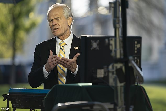 White House business advisor Peter Navarro obtained hydroxychloroquine and fought with Dr. Anthony Fauci over the effectiveness of the drug.