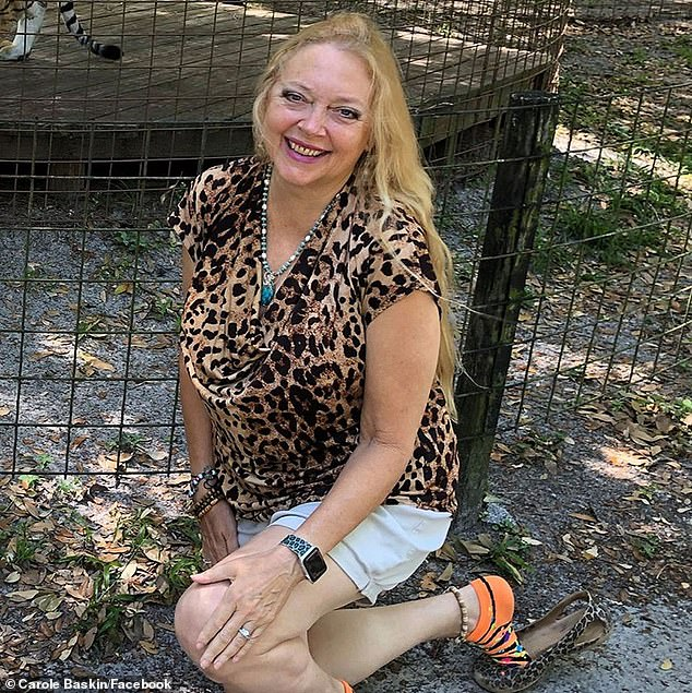 Exotic has been put behind bars for a murder conspiracy to hire Carole Baskin (photo) who owns a tiger and lion sanctuary in Tampa, Florida