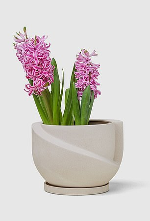 This Sculptural & Artistic Ceramic Planter (pictured) is for sale on Marie's website