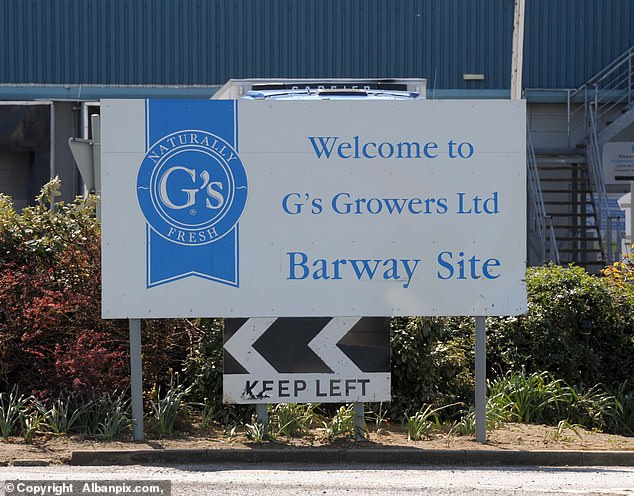 Workers at G's Growers are paid at least a living wage - £ 8.72 an hour for those over 25, and the most efficient pickers can expect to earn up to £ 15 an hour.