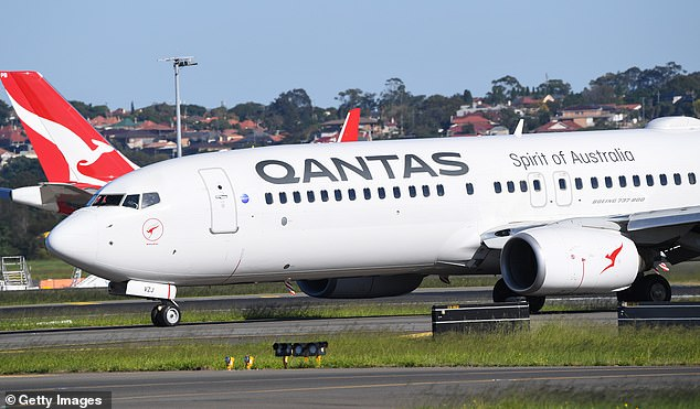 If there are no big increase in cases by August or September, Australians may be able to think about taking interstate holidays again - but it will be expensive. Pictured: A Qantas jet lands at Sydney airport on Friday